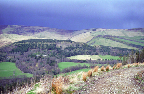 Bowhill, Yarrow Valley